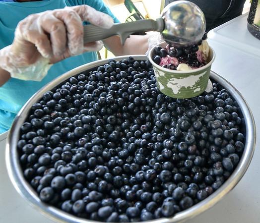 MET 071119 Blueberry Bowl