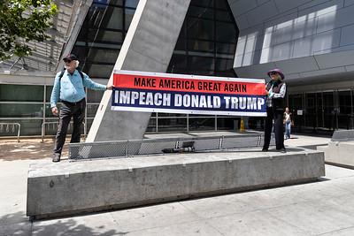 Impeach Trump 9 (Terry Scussel)
