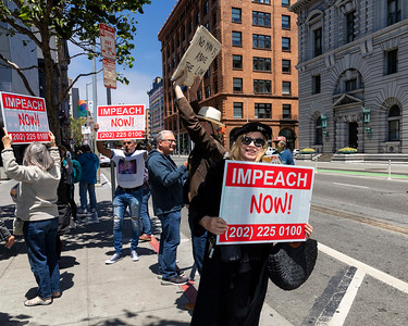 Impeach Trump 15 (Terry Scussel)