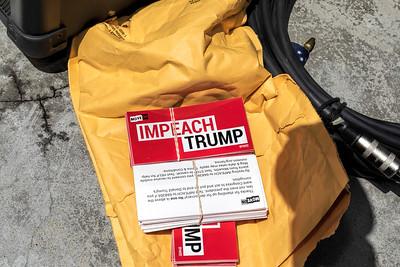 Impeach Trump 1 (Terry Scussel)