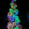 Lights4Paws2019-16