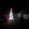 Lights4Paws2019-19