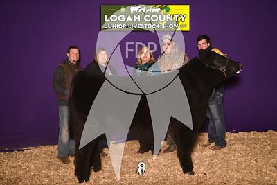 JO19-Logan-8585-1