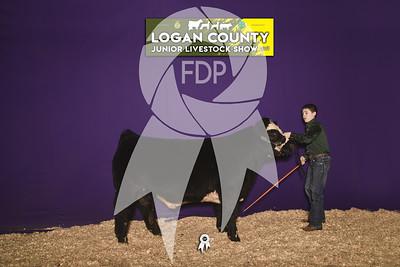 JO19-Logan-8600