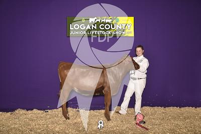 JO19-Logan-8225