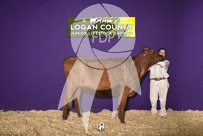 JO19-Logan-8238