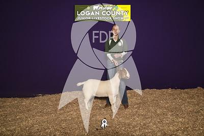 JO19-Logan-8419