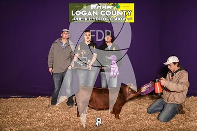 BO19-Logan-8631