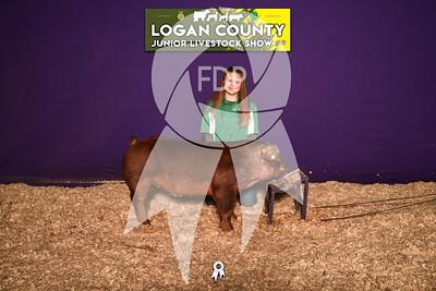 BO19-Logan-8677