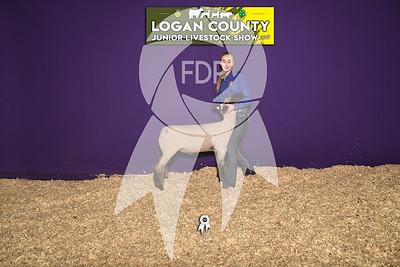 JO19-Logan-8292