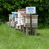 MET 051919 Bees