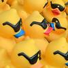 MET 051319 Ducks Close