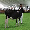 Mexico16_Holstein_1M9A4345