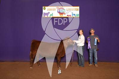 DO19-OSF-7235