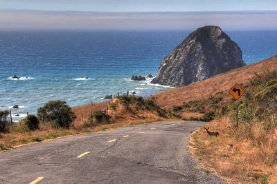 Lost Coast - Sugarloaf Island
