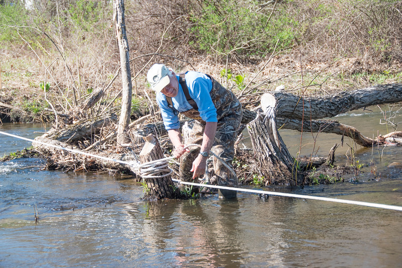 Pre-Loop: Tony Godino prepping the Splashdown crossing with guide ropes for runners after the beavers chomped down the trees at the crossing. (photo by Rob Cummings)
