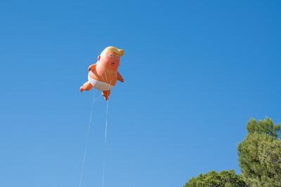 Sept 17 Trump Protests - S Disenhof-5943