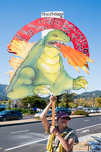 2019 Climate March - Mill Valley - Steve Disenhof-6226