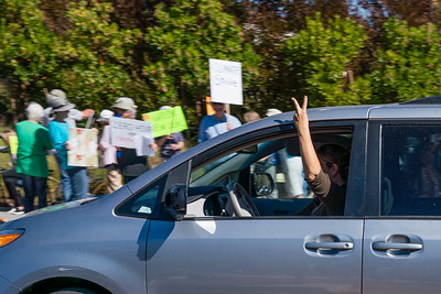 2019 Climate March - Mill Valley - Steve Disenhof-6144