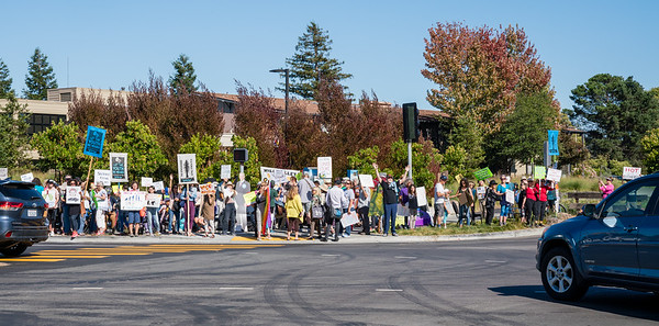2019 Climate March - Mill Valley - Steve Disenhof-6284