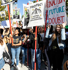 Climate Strike Protest 4 (Terry Scussel)