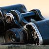 Our Ranger's binoculars
