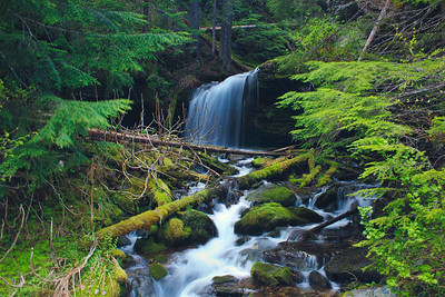 Fern Falls