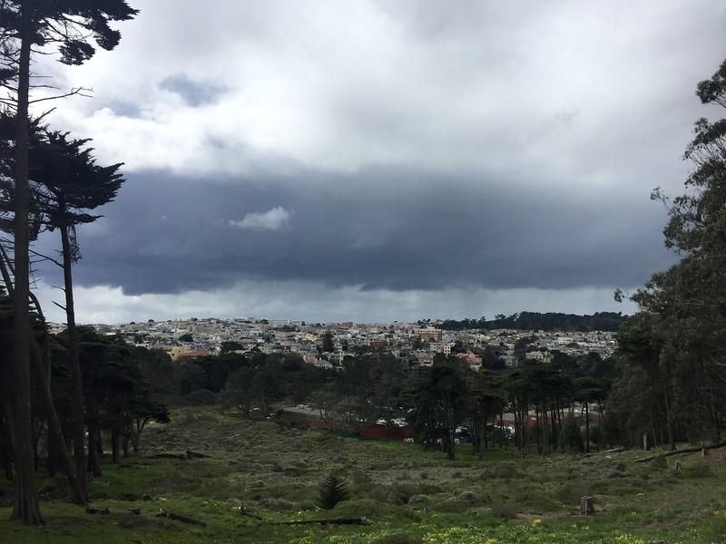 <b>Presidio</b> <br>San Francisco, CA <br>March 10, 2019