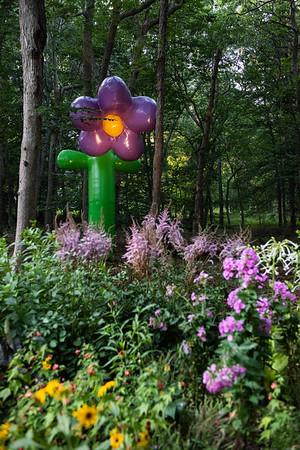 PLAYLAB, Grown Up Flower (Wilt) ©Laura Brichta