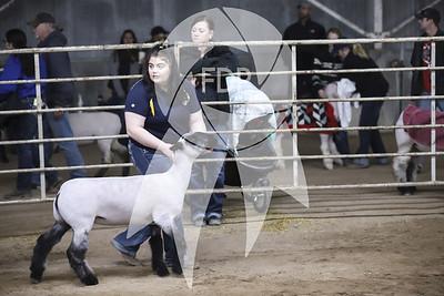 AJ19-Texas-0405