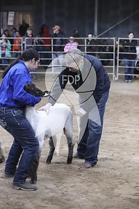 AJ19-Texas-0399