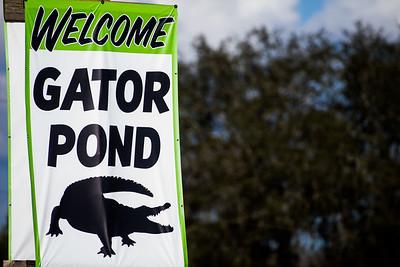 Volusia Speedway Park Gator Pond