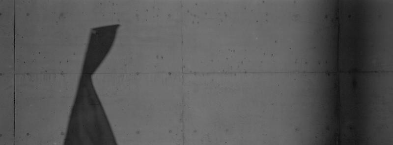 Hasselblad Xpan, 4/45mm, Ilford XP2 Super 400