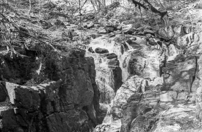 Water, Trees, Rocks