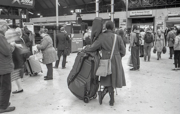 Have Cello, Will Travel
