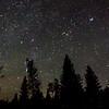 Starry january sky