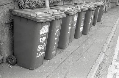 Trashcan Alley