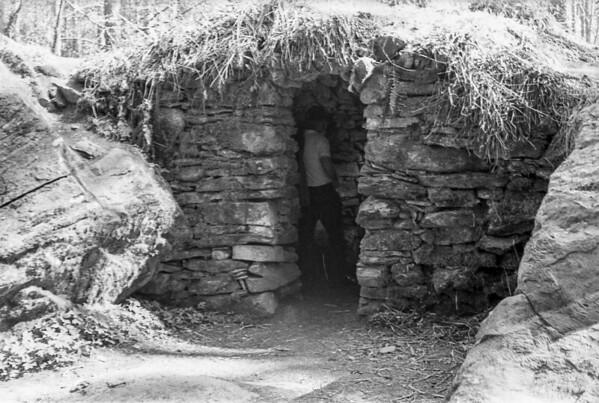 Hermit Dad