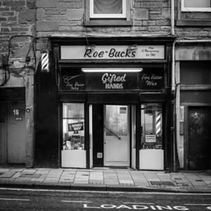 Roe-Bucks