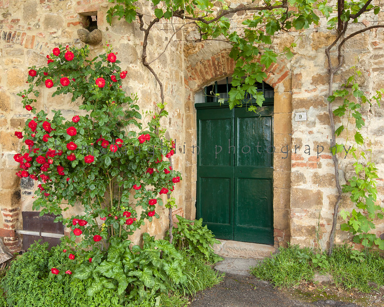Green Door and Roses , Monticchiello , Tuscany