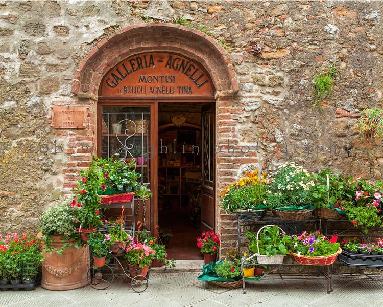 Flower Shop , Montisi , Tuscany