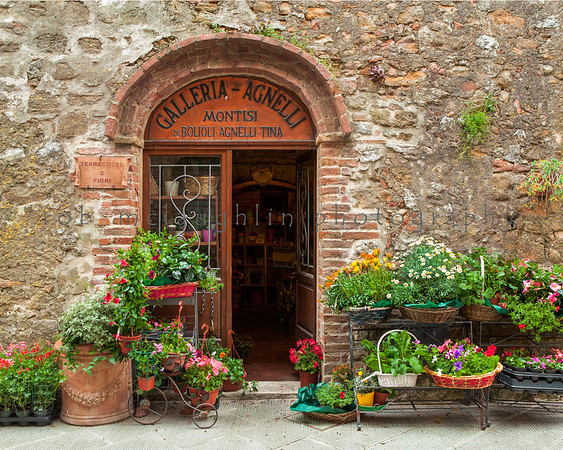 Flower Shop , Montisi , Tuscany