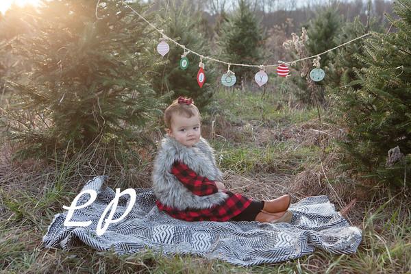 Moraghan Christmas 2019 (12)