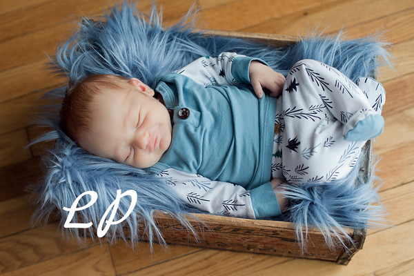 Malachi Newborn (5)