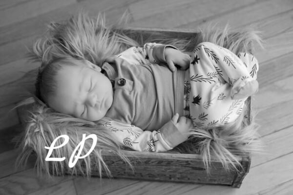 Malachi Newborn (3)