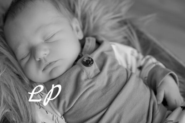Malachi Newborn (9)