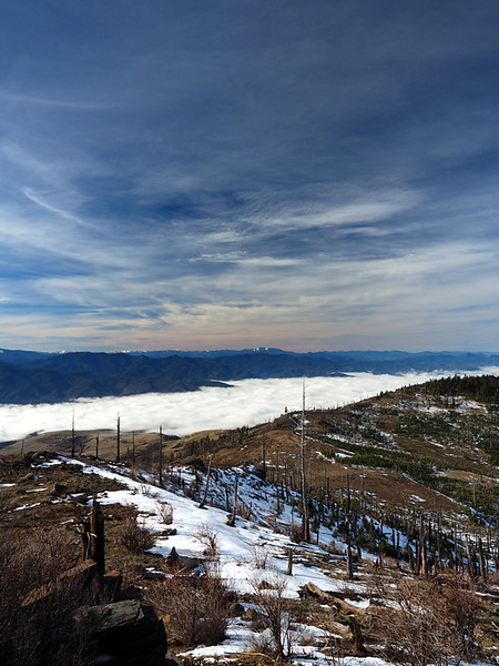 Looking north from the viewpoint, with fog filling the Bear Creek Valley