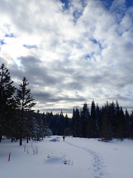 A person snowshoeing under partially cloudy skies