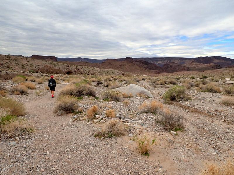 White Rock Wash, Arizona
