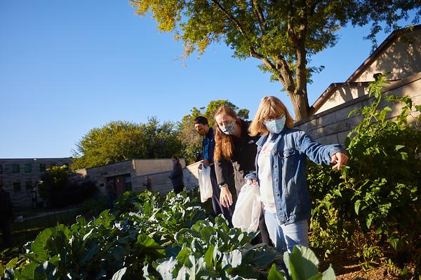 2020 UWL Victory Garden Harvest at Aptiv 0079